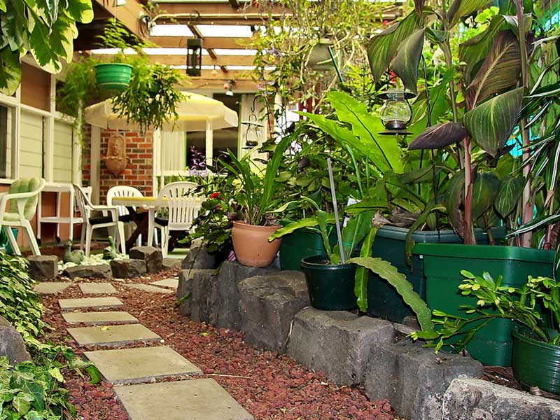 5 Ways To Make Your Home More Green